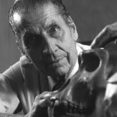 Bilim İnsanı Jose Delgado'nun İnsan ve Hayvan Beyinlerine Çip Takarak Yaptığı İlginç Deneyler