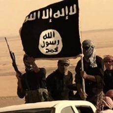 Suriye ve Irak'taki Etkisini Kaybeden IŞİD'in Doğuşu, Yükselişi ve Düşüşü