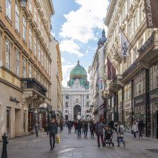 Avusturya'nın Irkçılık Konusunda Sert Olduğunu Gösteren Uygulamalar