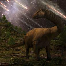 65 Milyon Yıl Önce Meksika'ya Düşerek Dinozor Neslini ve Dünya'nın Yarısını Yok Eden Meteor