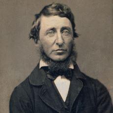Göl Kıyısına İnşa Ettiği Kulübesinde Doğal Yaşamı Savunan Düşünür: Henry David Thoreau
