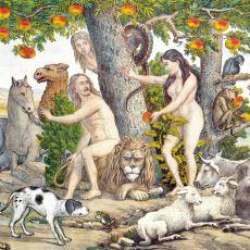 Evrim ve Ahlak Arasındaki Kadim İlişkinin Felsefe Düzleminde İncelemesi