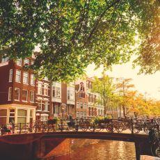 Hollanda Nasıl Tam Bir Bisiklet Ülkesi Oldu?