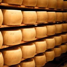 Parmesan Peynirinin Pahalı Olmasına Neden Olan Zorlu Yapım Süreci