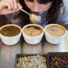 Kokusu ve Tadından Kahvenin Künyesini Çıkarabilen Kahve Tadımcıları: Q Grader