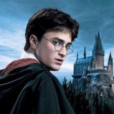 Harry Potter Serisi Hakkında Az Bilinenler