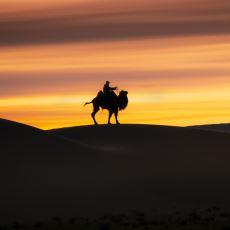 Sahra Çölü İkliminin Her 20 Bin Yılda Bir Tropikal İklime Dönüşmesi