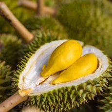 Kokusu İnsanı Hayattan Soğutan Bir Uzak Doğu Meyvesi: Durian