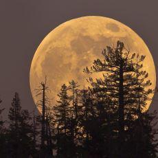 1948 Yılından Sonra En Büyük Süper Ay Bu Gece Gözlemlenecek