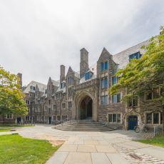 ABD'nin En Köklü 8 Üniversitesinin Oluşturduğu Elit Birlik: Sarmaşık Ligi (Ivy League)