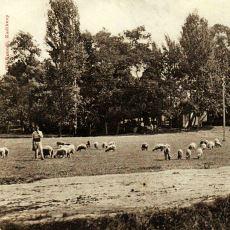 Bir Yabancının Gözünden: 1913 Yılında Anadolu'da Gündelik Hayat