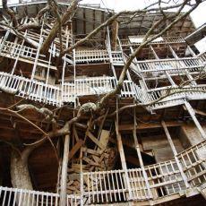80 Odasıyla Bir Apartman Büyüklüğünde Dünyanın En Büyük Ağaç Evi
