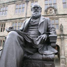 Charles Darwin'in Evrim Konusunda Haklı ve Haksız Çıktığı Şeyler