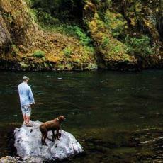 ABD Eyaletlerinden 4 Milyonluk Oregon'un, 20 Milyon Turist Çeken Aşırı Sade Reklam Kampanyası