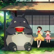 Her Yaştan İnsanın İzleyebileceği Mükemmel Bir Animasyon Film: Tonari no Totoro