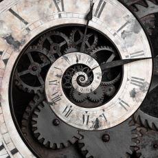 Evrim Teorisi Tartışmaları Sırasında Pek Dile Getirilmeyen Ufuk Açıcı Yaklaşımlar
