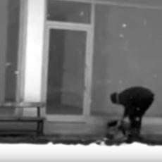 Giresun'da Üşüyen Köpeğe Montunu Veren Fedakar Belediye İşçisi