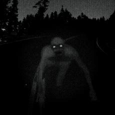 1977'de Boston'da Görüldüğü İddia Edilen Yaratık: Dover Demon