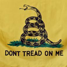 Amerikan Devrimi Esnasında Ortaya Çıkmış Askeri Sembol: Gadsden Bayrağı