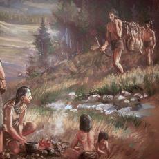 İnsan, Hayvanlardan Neyi Farklı Yaparak Günümüz Bilinç Seviyesine Ulaştı?
