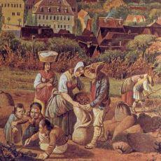 Orta Çağ'da Hayat Neden Zordu?
