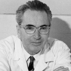 Toplama Kampından Kurtulmuş Psikiyatr Viktor Frankl'dan: Yaşam Nasıl Anlamlandırılır?