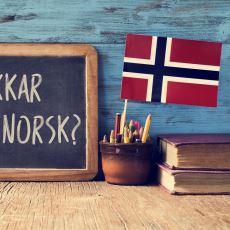 İngilizceye Çok Benzeyen Norveççe Dilini Öğrenmek İsteyenlere Tavsiyeler