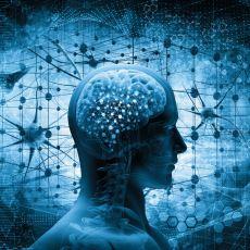 Hafıza Kaybından Alzheimer'a Kadar Birçok Hastalığı İyileştirecek Bir Çalışma: Beyin Protezi