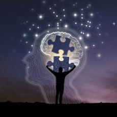 Bilginin Aşırı Artması Nedeniyle Beyinde Gelişen Uyum Yeteneği: Bilişsel Esneklik