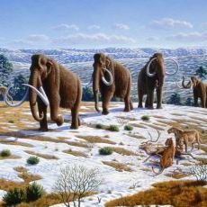 Dünya Tarihinde Şimdiye Kadar Görülmüş 5 Devasa Buzul Çağı