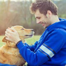 Köpeklerin İnsanlarla Göz Teması Kurarak Birçok Duyguyu Hissedebilmesi