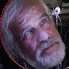 Örümcek Ağı ile Çevre Kirliliğinin Önüne Geçilmesi