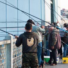 Türkiye'de Kimsenin Pek Dillendirmediği Bir Gerçek: Olta Balıkçılığı Terörü