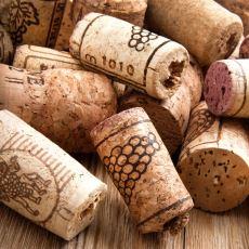 Şarap Mantarı Neyden ve Nasıl Yapılır?