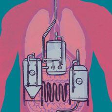 Bağırsakların Kendi Kendine Bira Üretmesi Durumu: Otomatik Mayalanma Sendromu