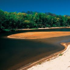 Biyolojik Çeşitliliğiyle Ülkemizin En Nadide Ekosistemlerinden Biri: İğneada Longozları