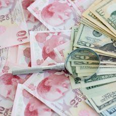Dolar Kurunun Cumhuriyetin Başlangıcından Günümüze Kadarki Değişimi