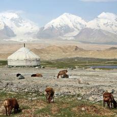 Unutulmuş Bir Gelenek: Dobruca Türklerindeki Küfür Akşamı Törenleri