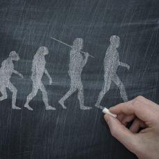 Dünyayı Algılamak İçin Bilinmesi Gereken En Önemli Şeylerden Biri: Evrimsel Psikoloji