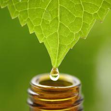 Hastalığa Neden Olan Unsurun Hastalığı Düzelteceğine İnanılan Alternatif Tıp Yöntemi: Homeopati