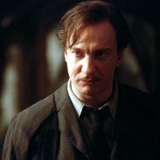 Harry Potter Evreninin Adamlık Müessesesi Remus Lupin'in Kurtadam Olma Hikayesi