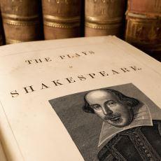İngiliz Dili ve Edebiyatı Tam Olarak Nasıl Bir Bölüm?