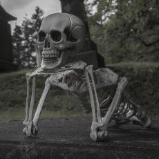Öldükten Sonra Vücudumuzda Gerçekleşen Acayip Olaylar