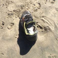 Salish Denizi'nde Ayakkabılar İçinde Kıyıya Vuran Gizemli İnsan Ayakları