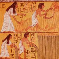 Antik Mısır'da Kadınların Hamile Olup Olmadığını Anlamak İçin Kullanılan İlginç Test