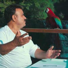 Modern Bir Klasiğimiz Oldu: Bülent Serttaş'ın Klibindeki Efkârlı Papağan