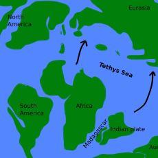 Milyonlarca Yıl Önce Anadolu'nun Üzerini Kaplayan Okyanus: Tetis