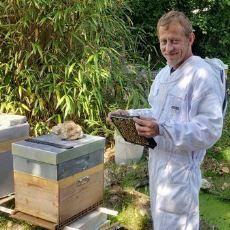 Marihuana Balı Elde Edebilmek İçin Arıları Eğiten Adam: Nicolas Trainerbees