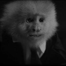 David Lynch'in Netflix'te Yayınlanan Yeni Filmi What Did Jack Do, Bizlere Ne Anlatıyor?