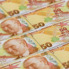 2020 Yılında Türkiye Ekonomisinin Yaşayabileceği Artı ve Eksi Durumlar